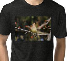 Cedar Waxwing Tri-blend T-Shirt