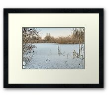 Lake in winter Framed Print