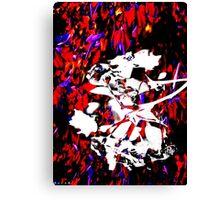 12011 Psycho 04 Canvas Print