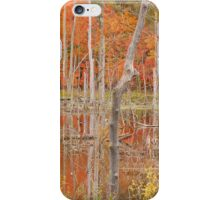 Swamp Colors iPhone Case/Skin