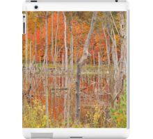 Swamp Colors iPad Case/Skin