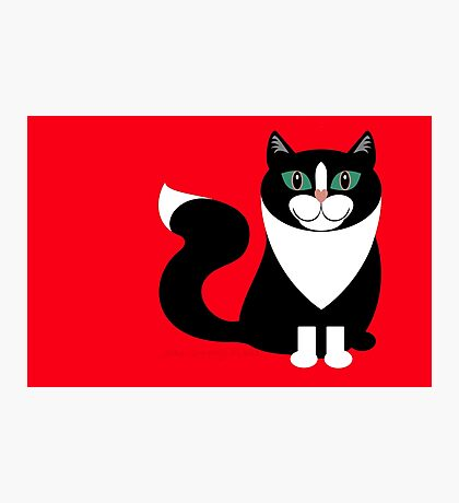 TUXEDO CAT ON RED BACKGROUND Photographic Print