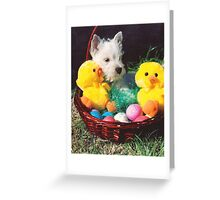 I'm Sure The Easter Bunny Is Over There. Greeting Card