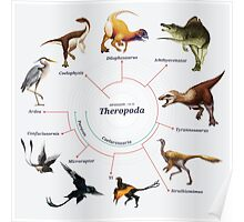 Theropoda: The Cladogram Poster