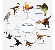 Theropoda: The Cladogram Photographic Print