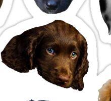 Pups Sticker