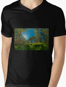 Looking out from Lachlan Swamp Mens V-Neck T-Shirt