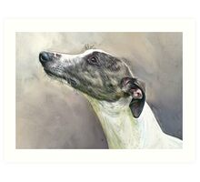 Whippet in Profile Art Print