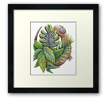 Lucky Lizard  Framed Print