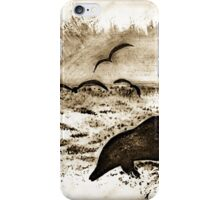 Dolphin Dreams iPhone Case/Skin