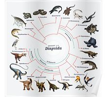 Diapsida: The Cladogram Poster