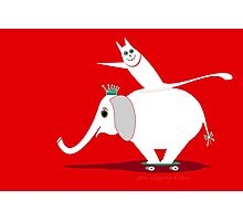 WHITE ELEPHANT & CAT ON RED Photographic Print