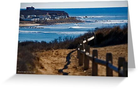 Coast Of Long Island - A View From Shadmoor State Park | Montauk, New York by © Sophie W. Smith