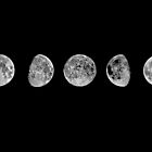 Phases Of The Moon by ezee123