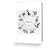Pterosauria: The Cladogram Greeting Card