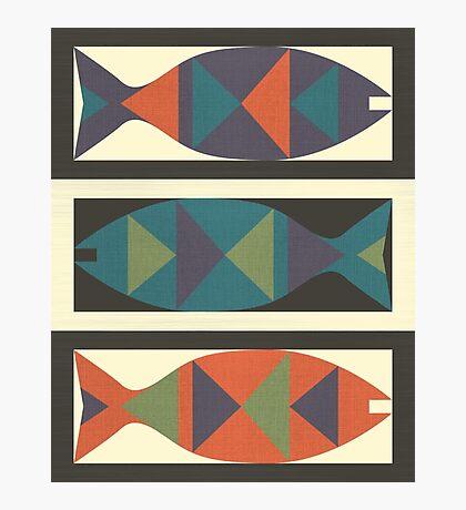Fish - 2 Photographic Print
