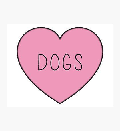 DOGS Photographic Print