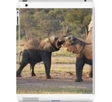 Playful Elephants iPad Case/Skin