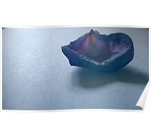 Purple Rose Petal Poster