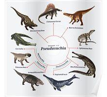Pseudosuchia: The Cladogram Poster