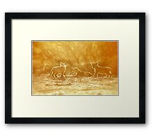 """THE """"THREE"""" LITTLE LION CUBS, a Last light capture - THE LION – Panthera leo Framed Print"""