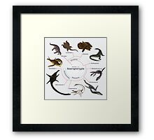 Sauropterygia: The Cladogram Framed Print