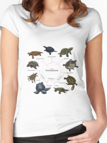 Testudinata: The Cladogram Women's Fitted Scoop T-Shirt