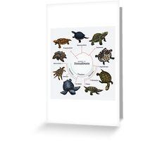 Testudinata: The Cladogram Greeting Card