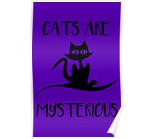 Cat - Cats are mysterious Poster