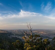 Langs Lookout by Joel Bramley