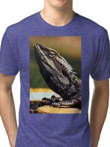 """Look Sharp"" Lizard sunning on log - Stanthorpe - QLD Tri-blend T-Shirt"