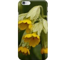 Cowslips and Dew Drops iPhone Case/Skin