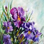 Irises by Ivana Pinaffo