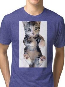 Tabby Eleganza Tri-blend T-Shirt