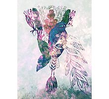 Song Bird Photographic Print