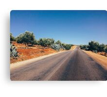 Empty Road in Moroccan Olive Tree Territory Canvas Print