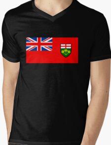 Flag of Ontario, Canada. Mens V-Neck T-Shirt