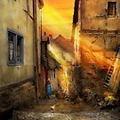 City - Germany - Alley - The farmers wife 1904 by Mike  Savad