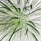 Green at Center by marybedy