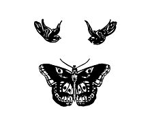 Harry Styles - Birds & Butterfly Photographic Print