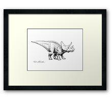 Cera the Triceratops - Dinosaur Ink Drawing Framed Print