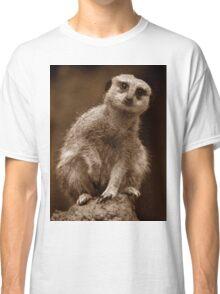 Meerkat Standing Sentry Classic T-Shirt