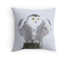 Perch - Snowy Owl Throw Pillow