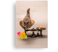 WORTH HER WEIGHT IN GOLD Canvas Print