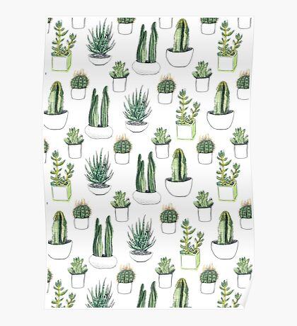 watercolour cacti and succulents Poster