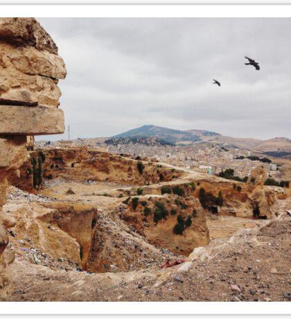 Three Birds Over Landfill in Morocco Sticker