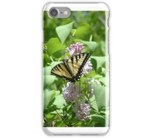 Swallowtail on a Lilac Bush iPhone Case/Skin