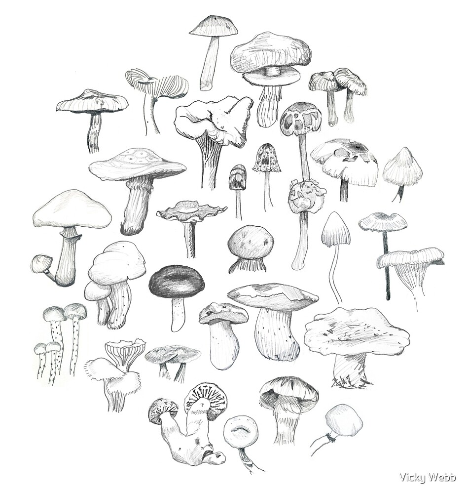 The Mushroom Gang by Vicky Webb