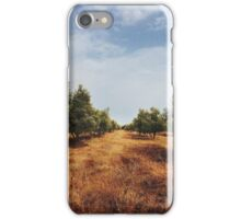 Olive Tree Orchard iPhone Case/Skin