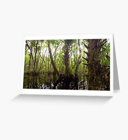 Mystic Swamp - Fakahatchee Strand Greeting Card